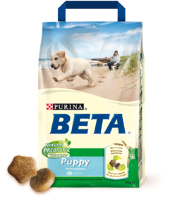 Beta Puppy image